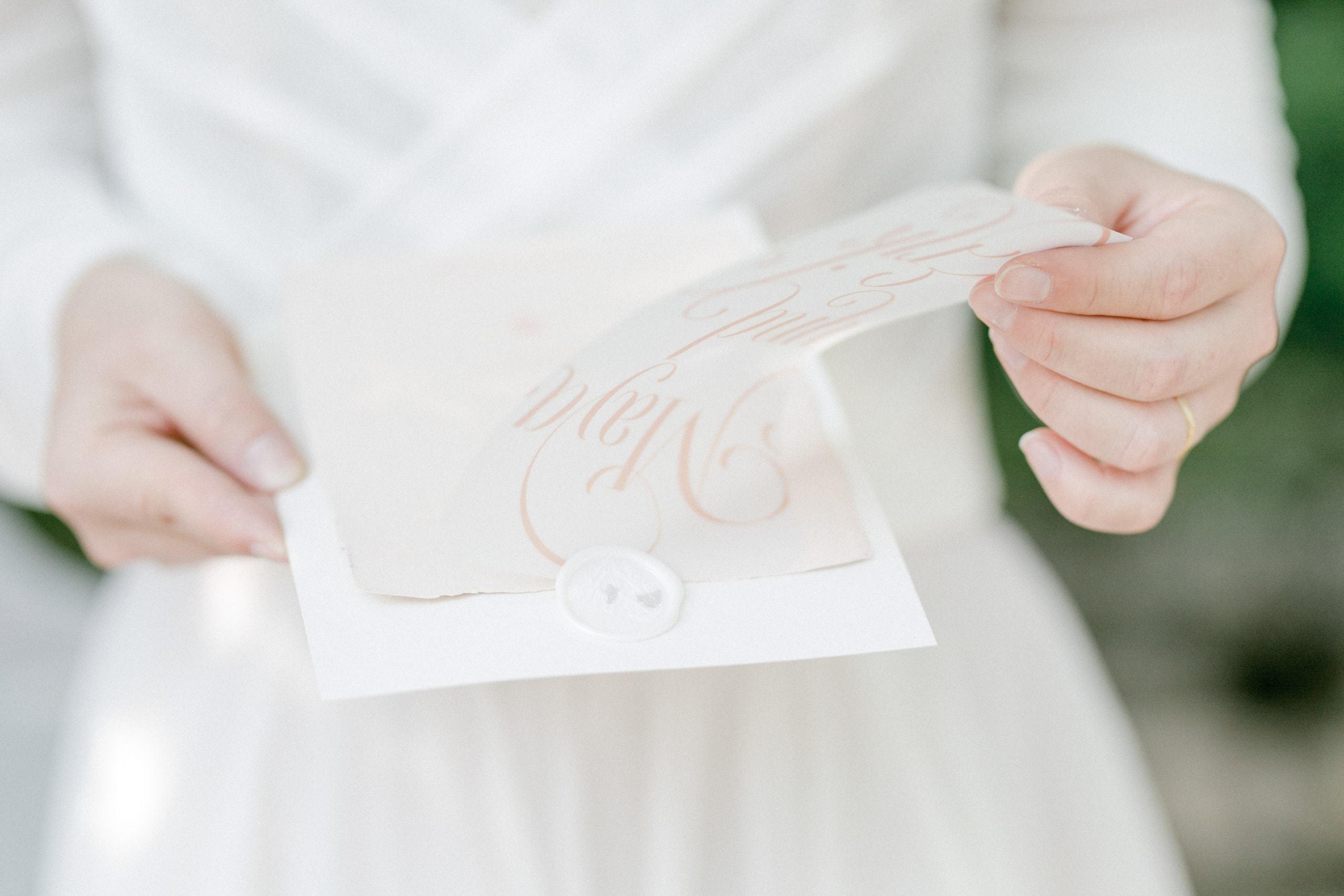 Gartenhochzeit Blush Hochzeitseinladung MK